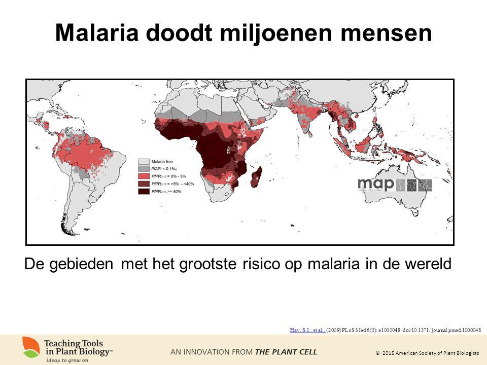 © 2015 American Society of Plant Biologists Malaria doodt miljoenen mensen De gebieden met het grootste risico op malaria in de wereld Hay, S.I., et al., Hay, S.I., et al., (2009) PLoS Med 6(3): e1000048.