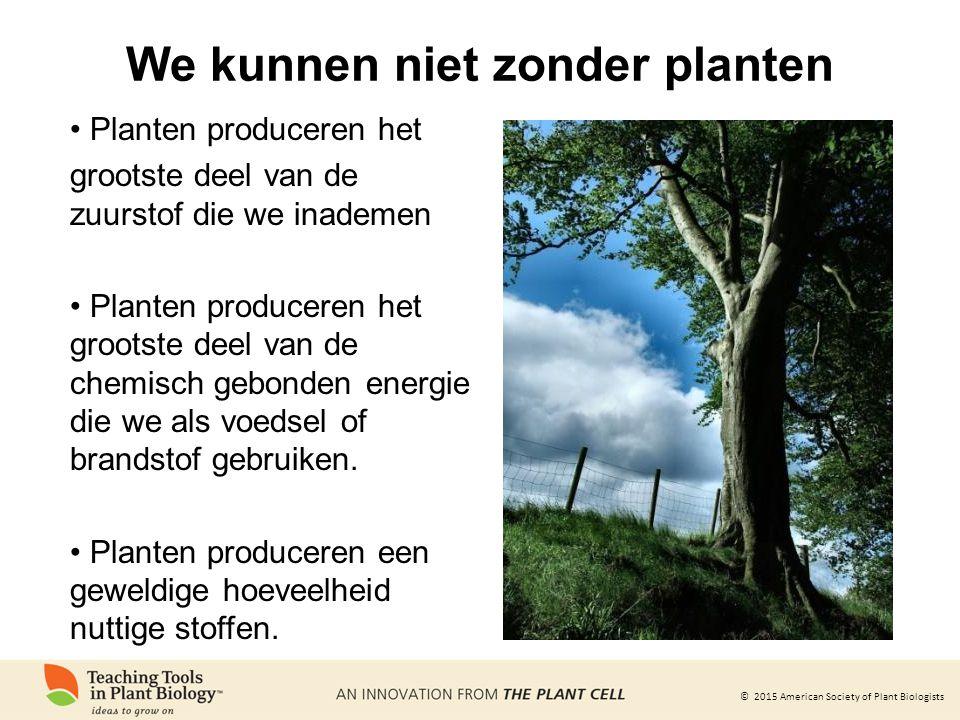 © 2015 American Society of Plant Biologists We kunnen niet zonder planten Planten produceren het grootste deel van de zuurstof die we inademen Planten produceren het grootste deel van de chemisch gebonden energie die we als voedsel of brandstof gebruiken.