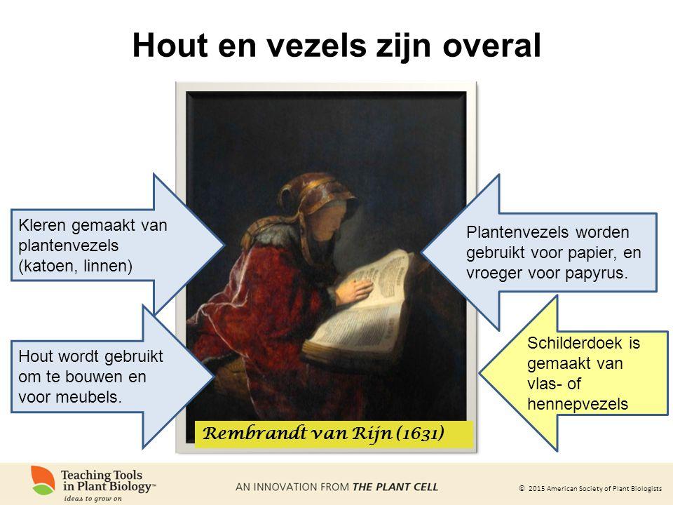 © 2015 American Society of Plant Biologists Hout en vezels zijn overal Rembrandt van Rijn (1631) Kleren gemaakt van plantenvezels (katoen, linnen) Plantenvezels worden gebruikt voor papier, en vroeger voor papyrus.