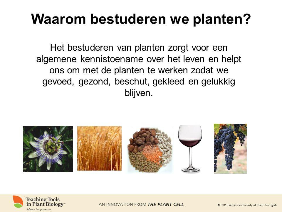 © 2015 American Society of Plant Biologists Waarom bestuderen we planten? Het bestuderen van planten zorgt voor een algemene kennistoename over het le