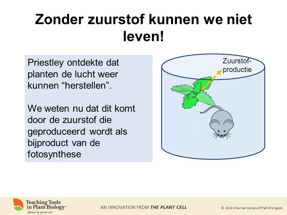 © 2015 American Society of Plant Biologists Zonder zuurstof kunnen we niet leven! Zuurstof- productie Priestley ontdekte dat planten de lucht weer kun