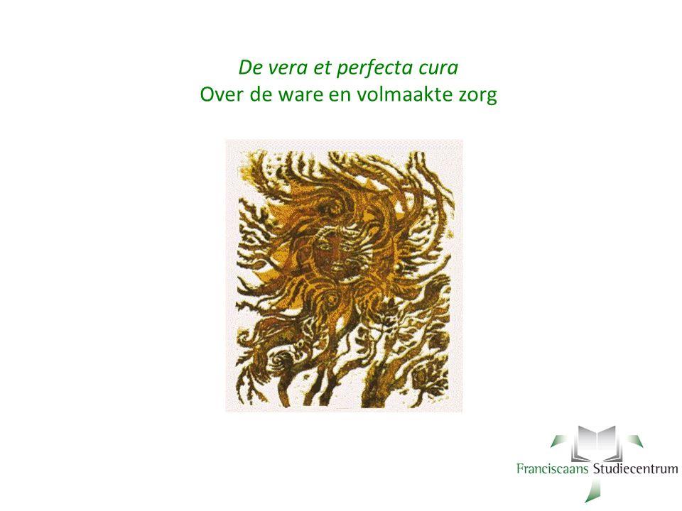 De vera et perfecta cura Over de ware en volmaakte zorg