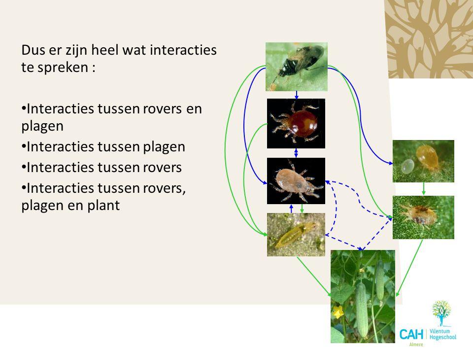Dus er zijn heel wat interacties te spreken : Interacties tussen rovers en plagen Interacties tussen plagen Interacties tussen rovers Interacties tuss