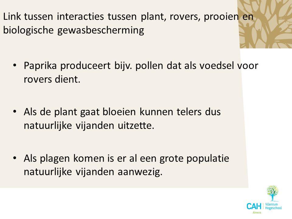Paprika produceert bijv. pollen dat als voedsel voor rovers dient. Als de plant gaat bloeien kunnen telers dus natuurlijke vijanden uitzette. Als plag