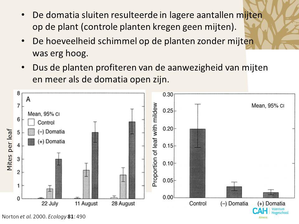 Mites per leaf De domatia sluiten resulteerde in lagere aantallen mijten op de plant (controle planten kregen geen mijten). De hoeveelheid schimmel op