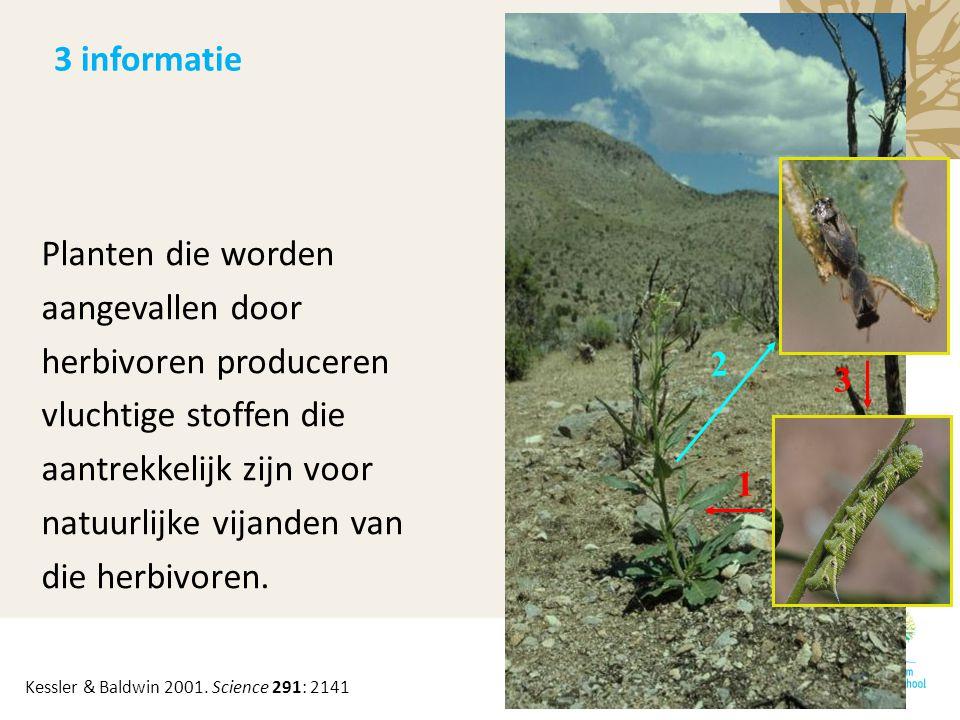 1 2 3 Planten die worden aangevallen door herbivoren produceren vluchtige stoffen die aantrekkelijk zijn voor natuurlijke vijanden van die herbivoren.