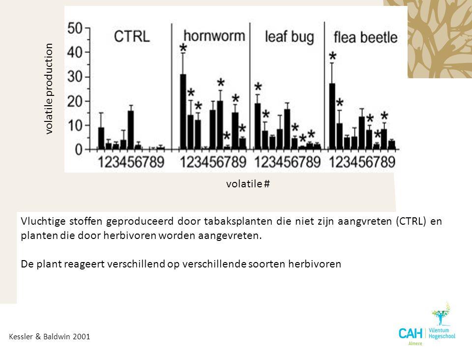 volatile # volatile production Kessler & Baldwin 2001 Vluchtige stoffen geproduceerd door tabaksplanten die niet zijn aangvreten (CTRL) en planten die