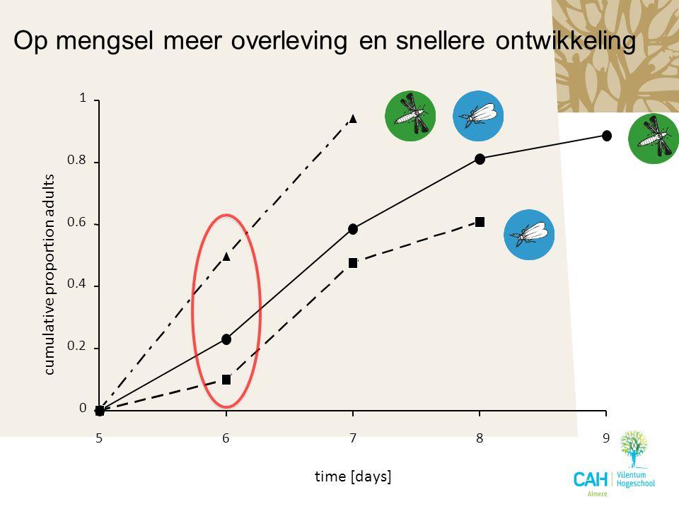 0 0.2 0.4 0.6 0.8 1 56789 time [days] cumulative proportion adults Op mengsel meer overleving en snellere ontwikkeling