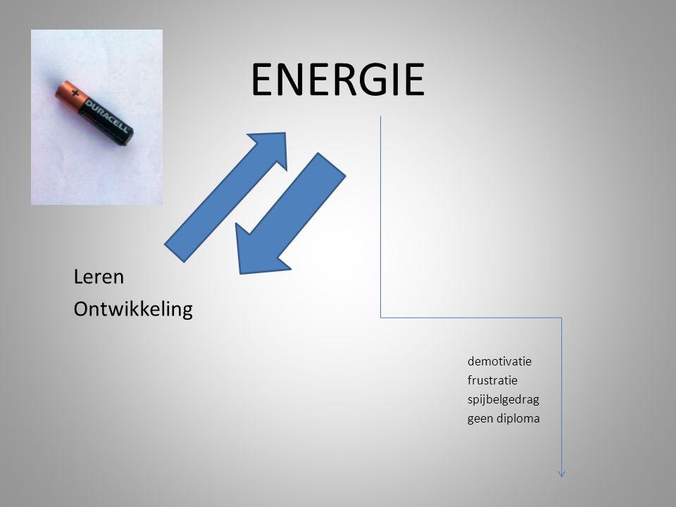 ENERGIE leren demotivatie frustratie spijbelgedrag geen diploma Leren Ontwikkeling