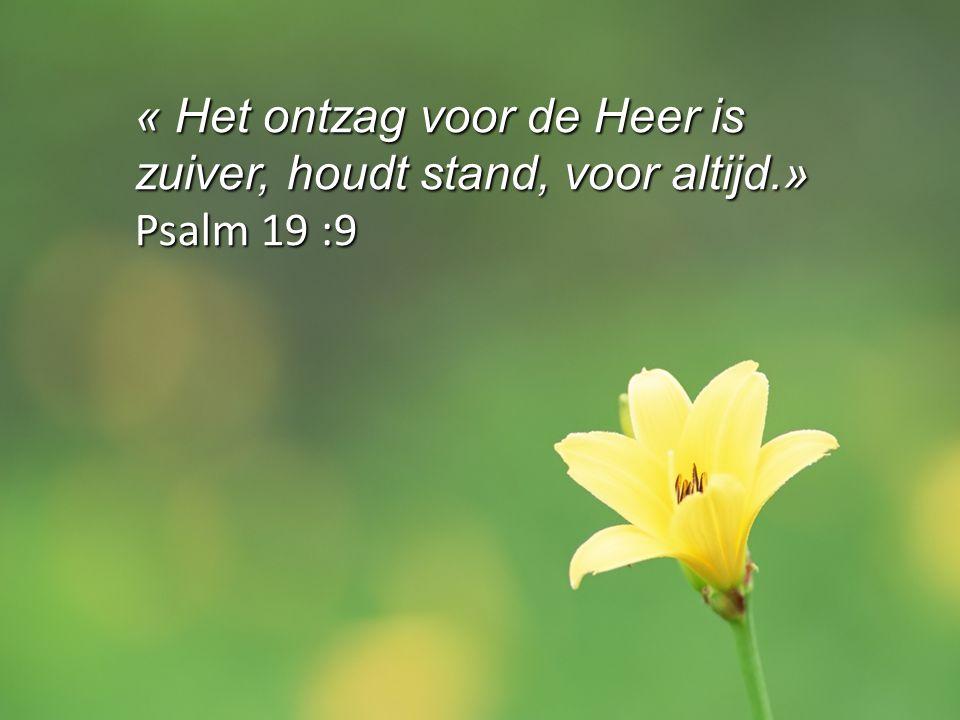 « Het ontzag voor de Heer is zuiver, houdt stand, voor altijd.» Psalm 19 :9