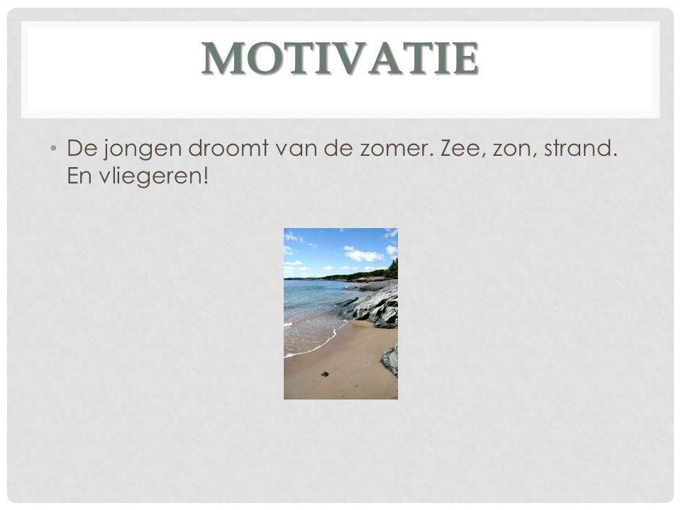MOTIVATIE De jongen droomt van de zomer. Zee, zon, strand. En vliegeren!