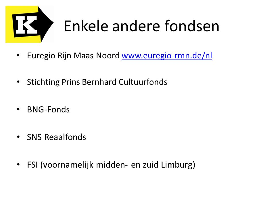 Euregio Rijn Maas Noord www.euregio-rmn.de/nlwww.euregio-rmn.de/nl Stichting Prins Bernhard Cultuurfonds BNG-Fonds SNS Reaalfonds FSI (voornamelijk mi