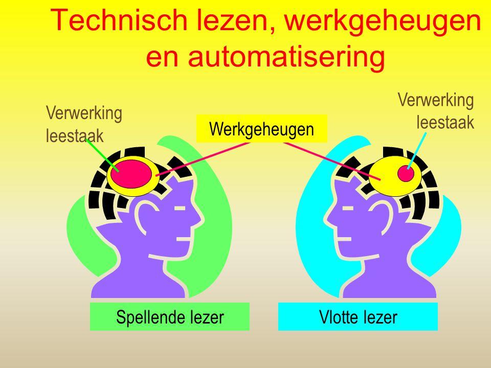 Technisch lezen, werkgeheugen en automatisering Verwerking leestaak Verwerking leestaak Spellende lezerVlotte lezer Werkgeheugen