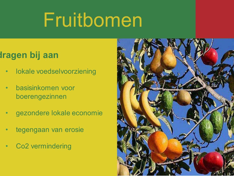 Fruitbomen lokale voedselvoorziening basisinkomen voor boerengezinnen gezondere lokale economie tegengaan van erosie Co2 vermindering dragen bij aan Fruitbomen
