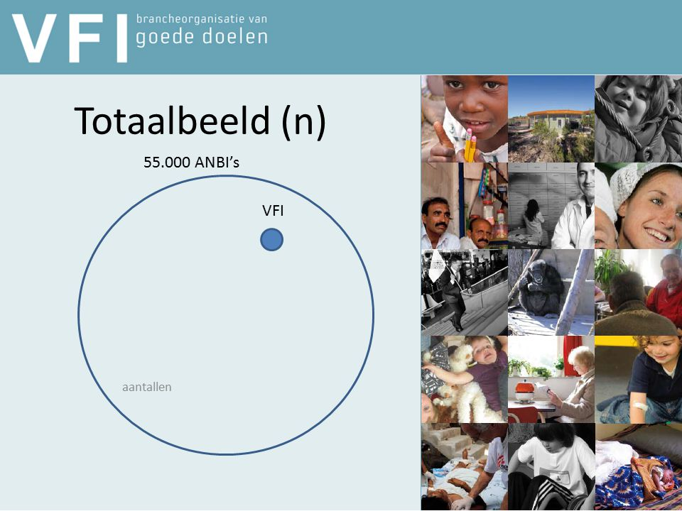 Totaalbeeld (n) aantallen 55.000 ANBI's VFI