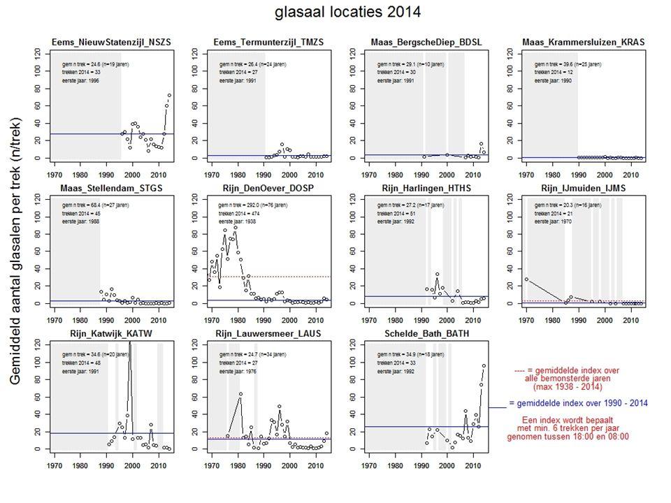 Gegevens waarover index wordt gemaakt (APR-MEI) 2013: 3703 glasalen over 643 trekken: index: 5.75 2014: 2148 over 474 trekken: index: 4.53 Gemiddeld aantal glasalen per dag (n/trek) Gegevens Den Oever