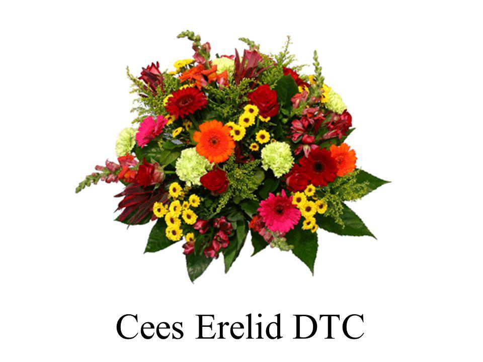Cees Erelid DTC