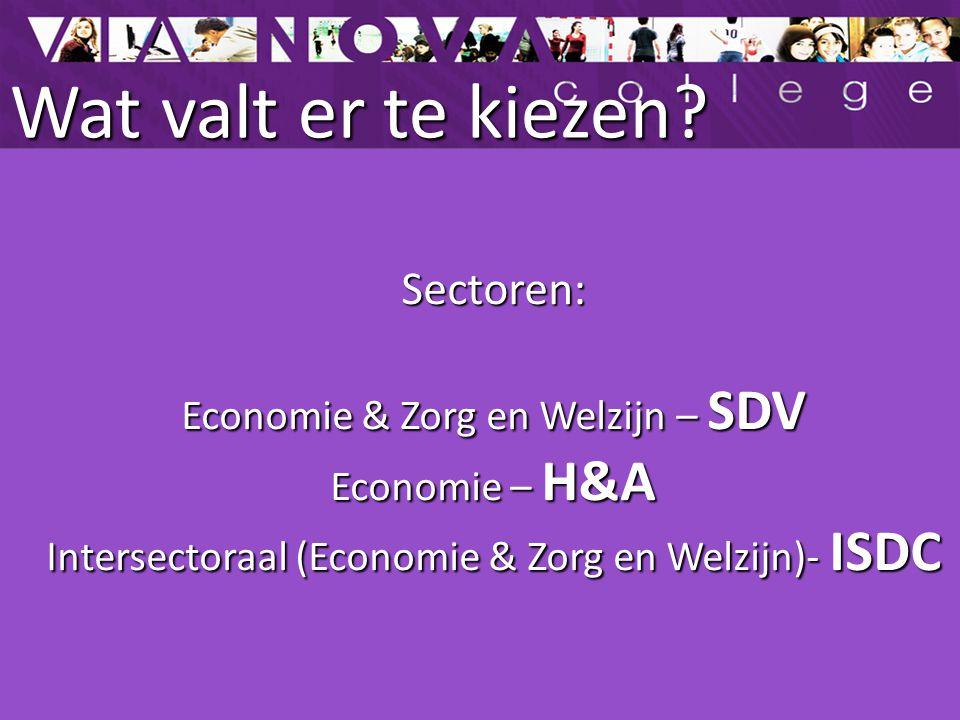 Wat valt er te kiezen? Sectoren: Economie & Zorg en Welzijn – SDV Economie – H&A Intersectoraal (Economie & Zorg en Welzijn)- ISDC