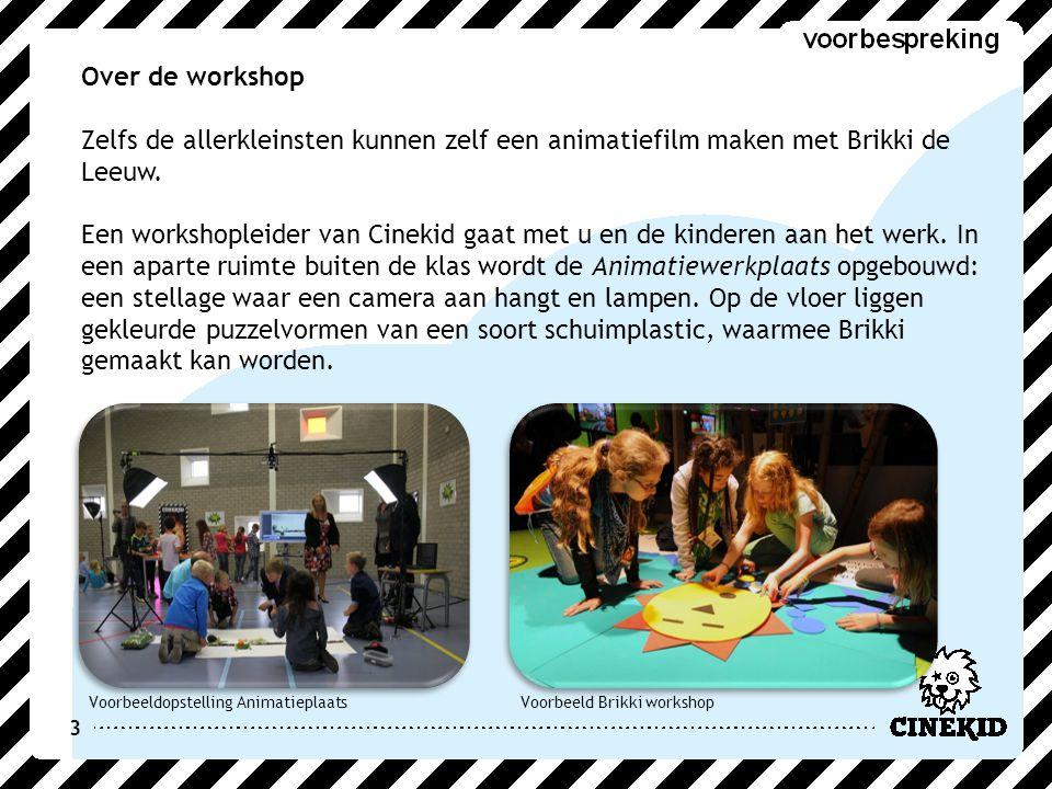 3 Over de workshop Zelfs de allerkleinsten kunnen zelf een animatiefilm maken met Brikki de Leeuw. Een workshopleider van Cinekid gaat met u en de kin