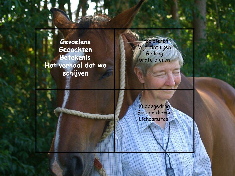 Gevoelens Gedachten Betekenis Het verhaal dat we schijven Prooidieren Vijf zintuigen Gedrag Grote dieren Kuddegedrag Sociale dieren Lichaamstaal