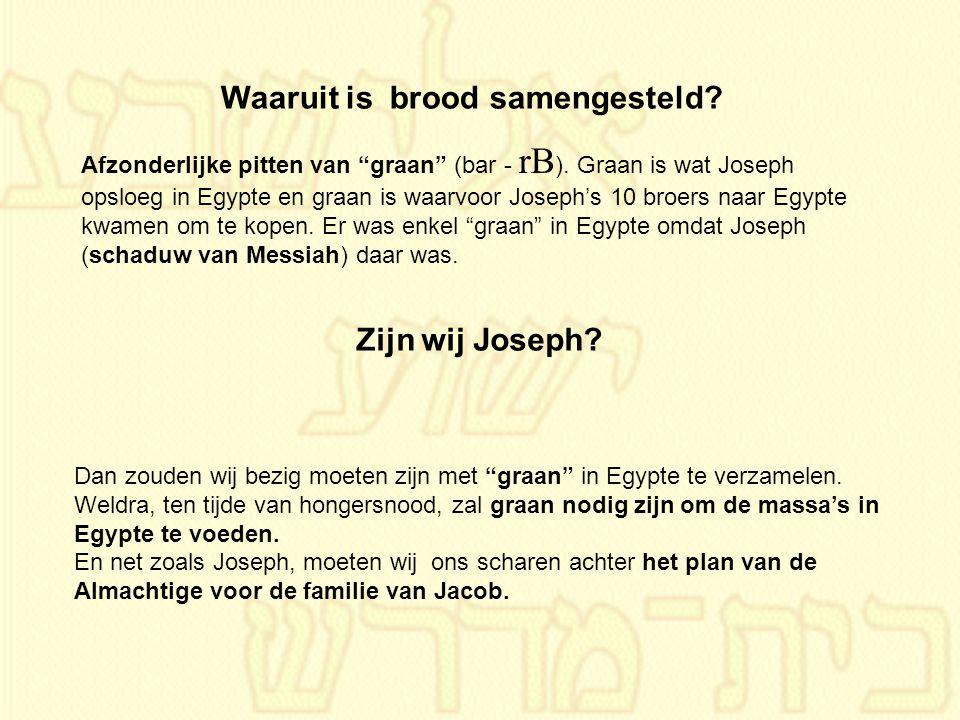 """Afzonderlijke pitten van """"graan"""" (bar - rB ). Graan is wat Joseph opsloeg in Egypte en graan is waarvoor Joseph's 10 broers naar Egypte kwamen om te k"""