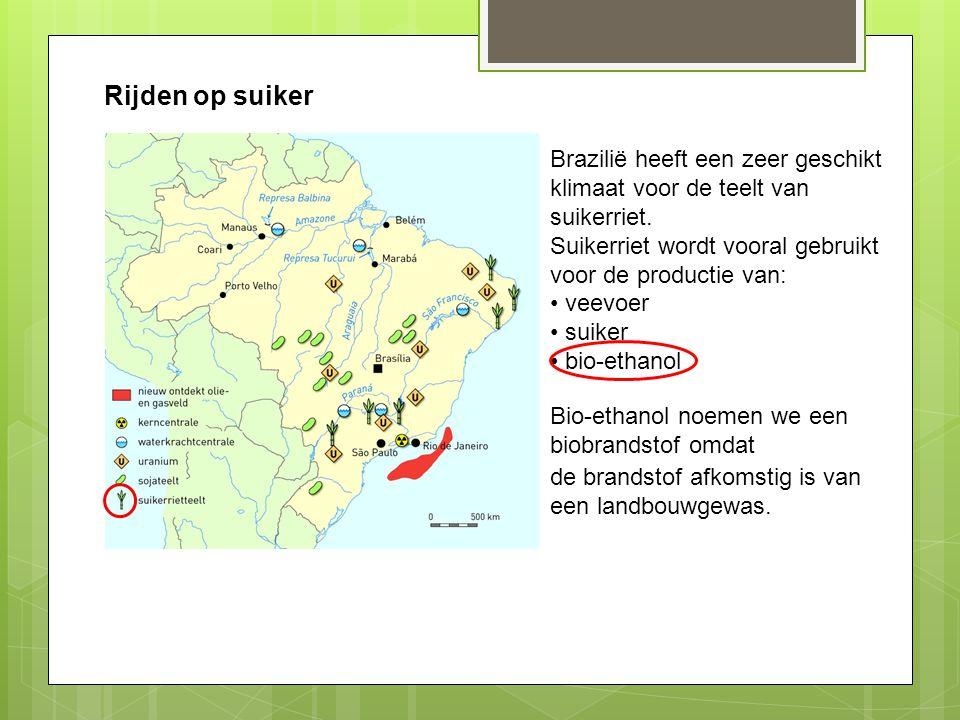 Rijden op suiker Brazilië heeft een zeer geschikt klimaat voor de teelt van suikerriet. Suikerriet wordt vooral gebruikt voor de productie van: veevoe