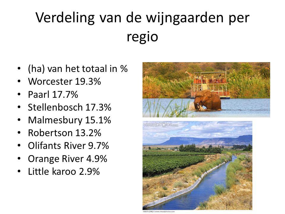 Verdeling van de wijngaarden per regio (ha) van het totaal in % Worcester 19.3% Paarl 17.7% Stellenbosch 17.3% Malmesbury 15.1% Robertson 13.2% Olifan