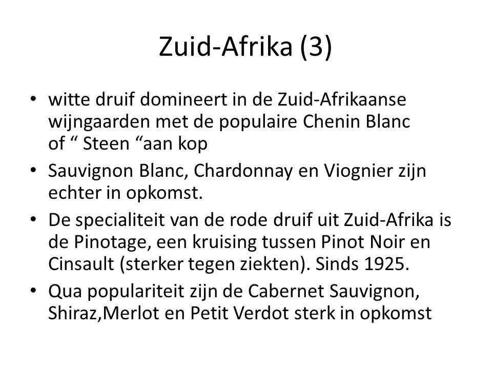 """Zuid-Afrika (3) witte druif domineert in de Zuid-Afrikaanse wijngaarden met de populaire Chenin Blanc of """" Steen """"aan kop Sauvignon Blanc, Chardonnay"""