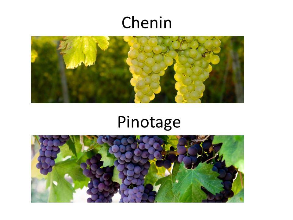 Chenin Pinotage