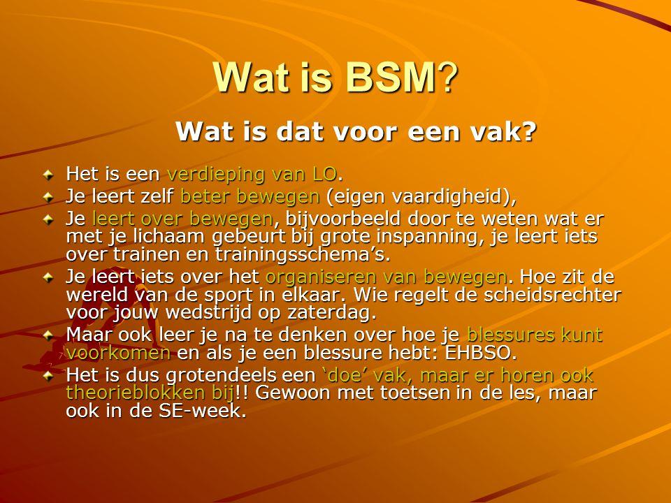 Wat is BSM.Wat is dat voor een vak. Het is een verdieping van LO.