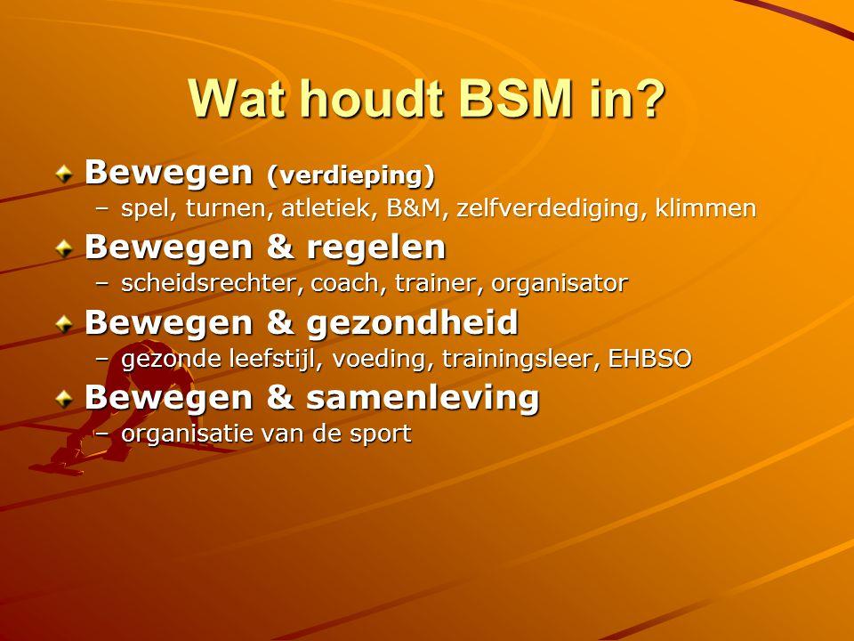 Wat houdt BSM in.