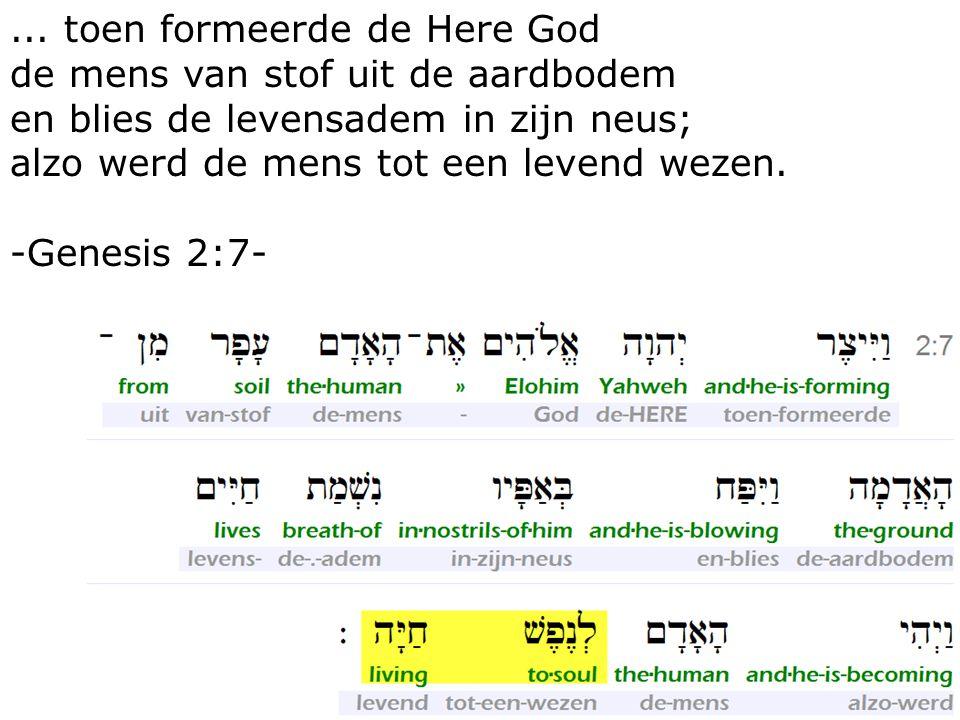 36... toen formeerde de Here God de mens van stof uit de aardbodem en blies de levensadem in zijn neus; alzo werd de mens tot een levend wezen. -Genes