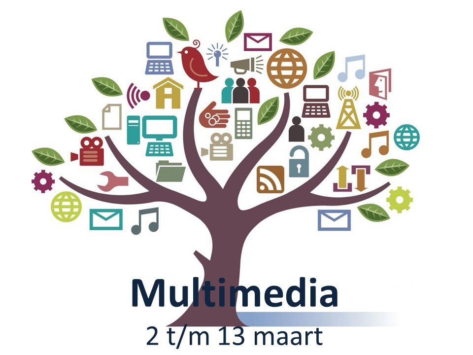 Multimedia 2 t/m 13 maart