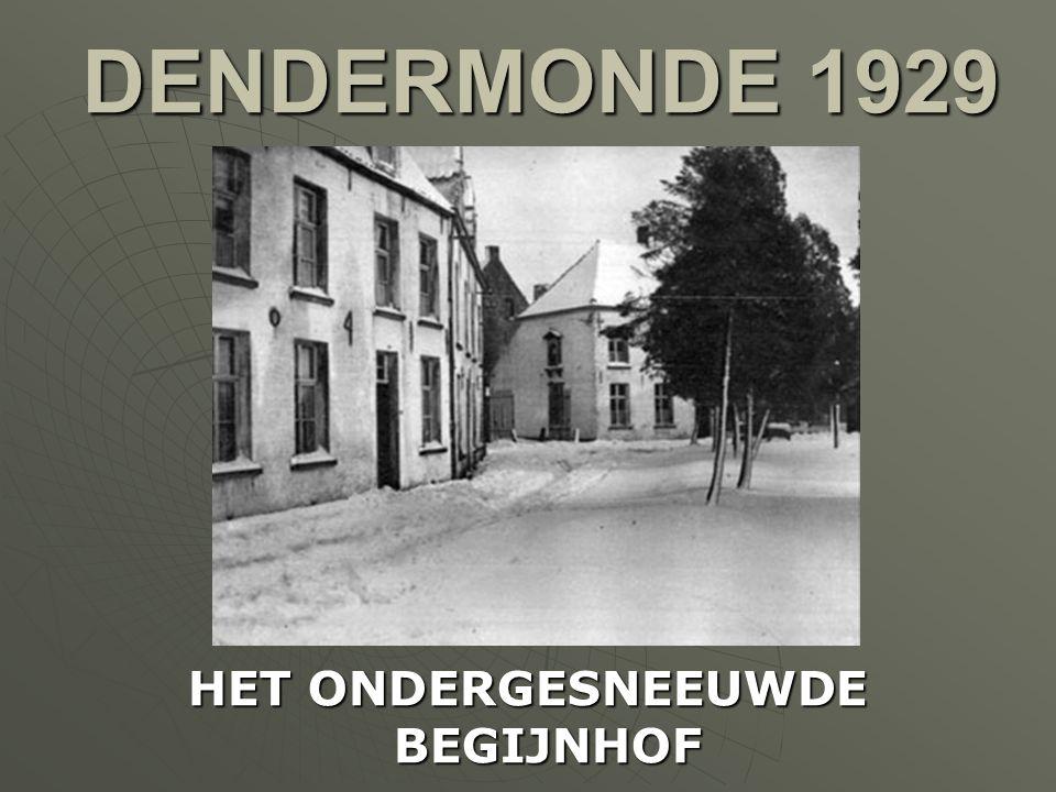 MOERZEKE 1929 NOG STEEDS WATEROVERLAST IN DE REGIO. ER WORDT VOEDSEL AANGEBRACHT NAAR AFGELEGEN BOERDERIJEN