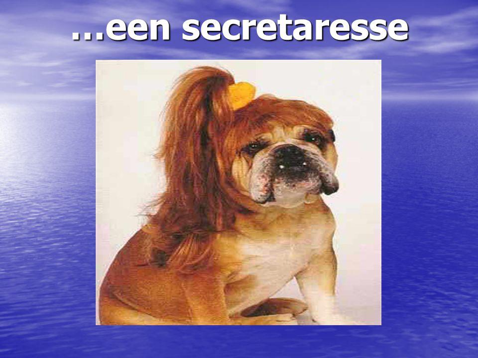 …een secretaresse …een secretaresse