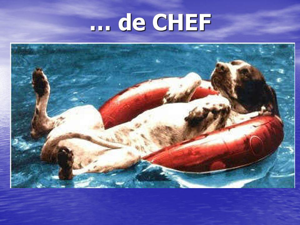… de CHEF