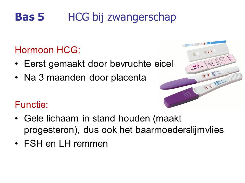 Hormoon HCG: Eerst gemaakt door bevruchte eicel Na 3 maanden door placenta Functie: Gele lichaam in stand houden (maakt progesteron), dus ook het baar