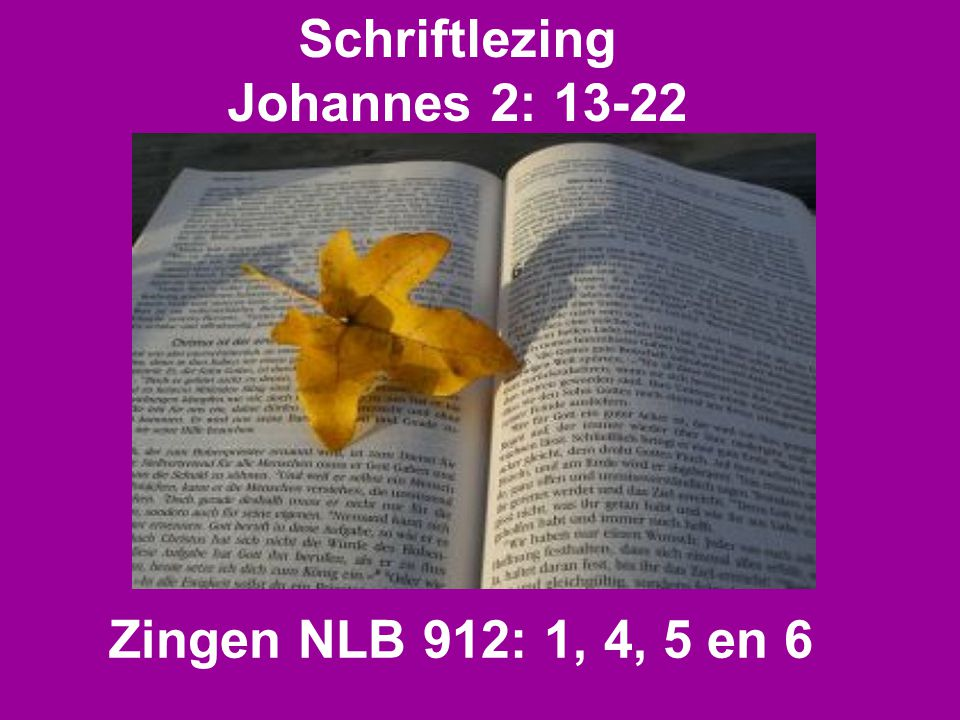 Schriftlezing Johannes 2: 13-22 Zingen NLB 912: 1, 4, 5 en 6