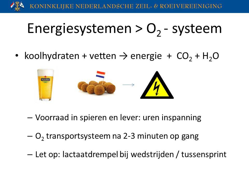 Energiesystemen > O 2 - systeem koolhydraten + vetten → energie + CO 2 + H 2 O – Voorraad in spieren en lever: uren inspanning – O 2 transportsysteem