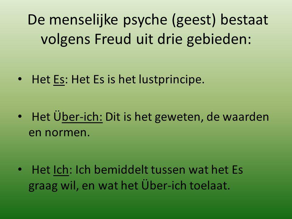 De menselijke psyche (geest) bestaat volgens Freud uit drie gebieden: Het Es: Het Es is het lustprincipe. Het Über-ich: Dit is het geweten, de waarden