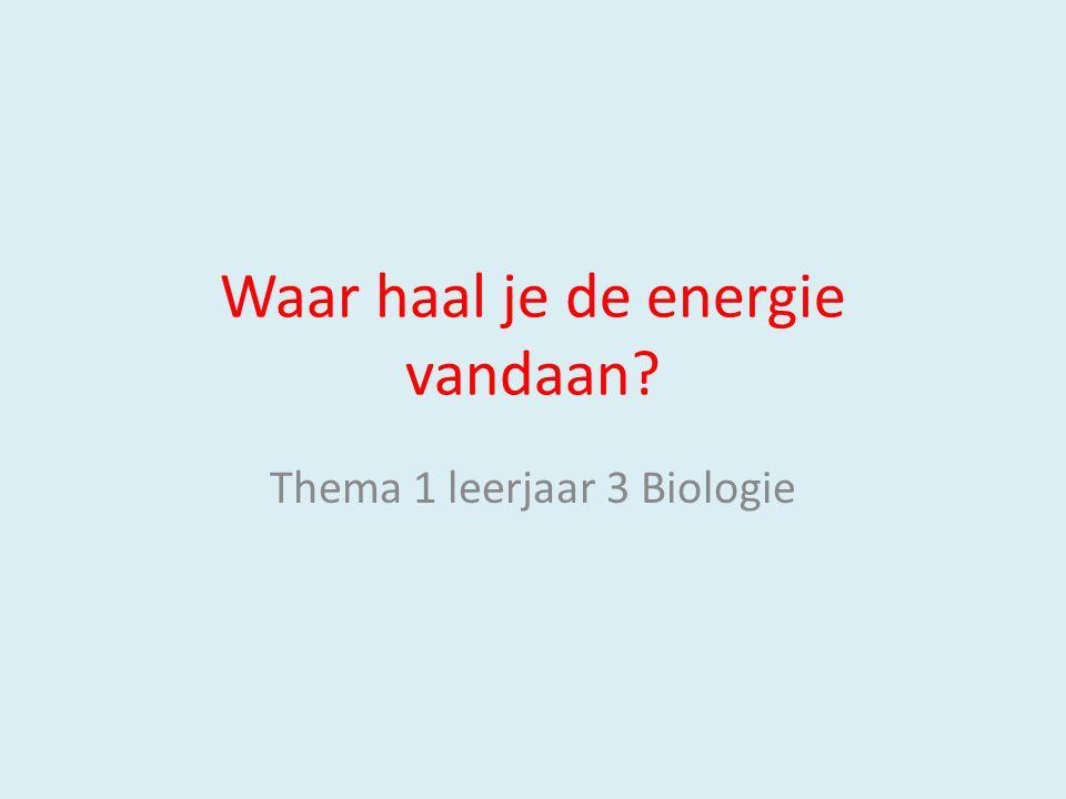 Waar haal je de energie vandaan? Thema 1 leerjaar 3 Biologie