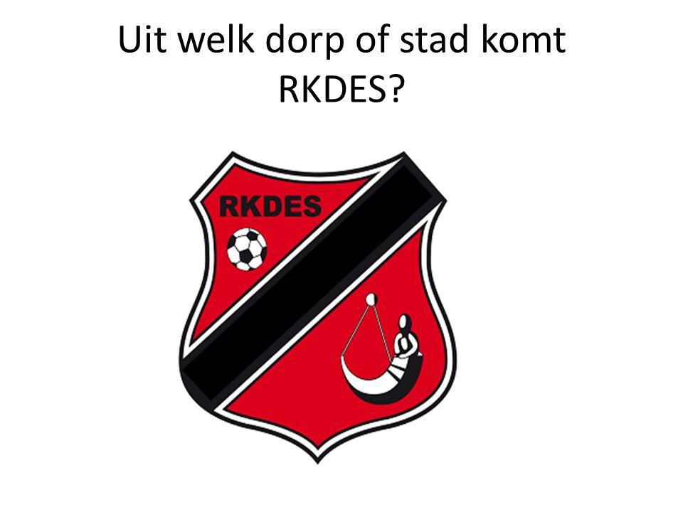 Uit welk dorp of stad komt RKDES?