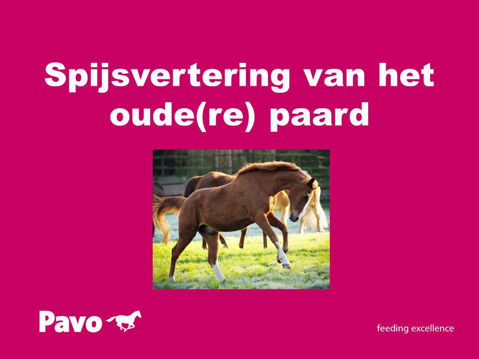 Inhoud presentatie Voeding van het paard En het oude(re) paard?.