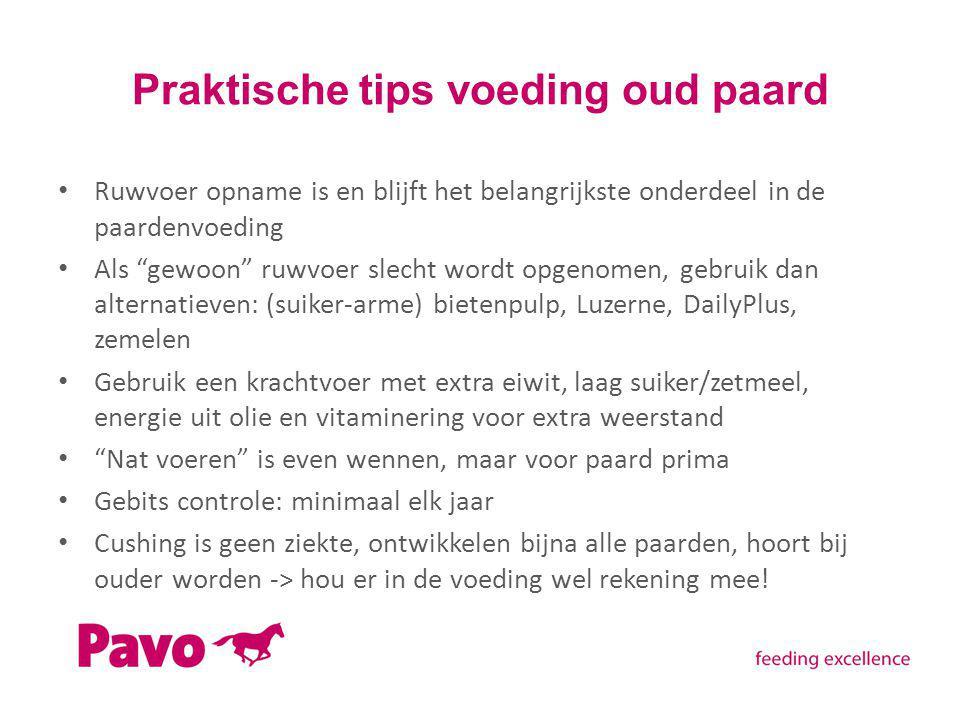 """Praktische tips voeding oud paard Ruwvoer opname is en blijft het belangrijkste onderdeel in de paardenvoeding Als """"gewoon"""" ruwvoer slecht wordt opgen"""