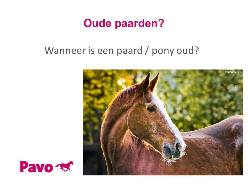 Oude paarden? Wanneer is een paard / pony oud?