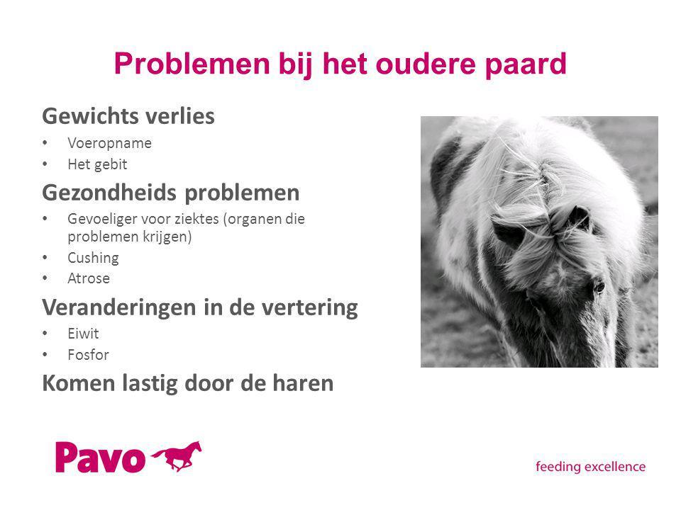 Problemen bij het oudere paard Gewichts verlies Voeropname Het gebit Gezondheids problemen Gevoeliger voor ziektes (organen die problemen krijgen) Cus