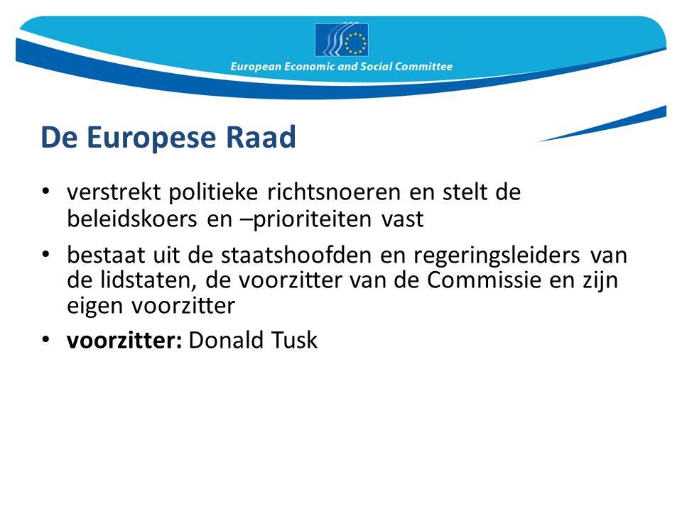 De Europese Raad verstrekt politieke richtsnoeren en stelt de beleidskoers en –prioriteiten vast bestaat uit de staatshoofden en regeringsleiders van