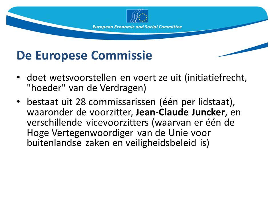 De Europese Commissie doet wetsvoorstellen en voert ze uit (initiatiefrecht,