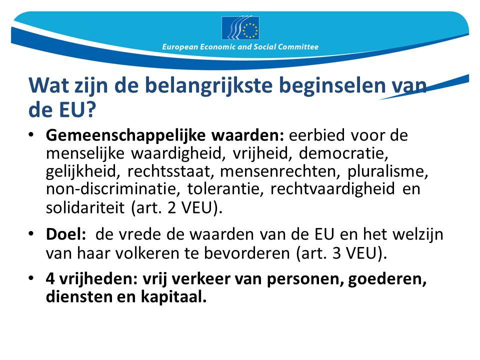 Wat zijn de belangrijkste beginselen van de EU? Gemeenschappelijke waarden: eerbied voor de menselijke waardigheid, vrijheid, democratie, gelijkheid,