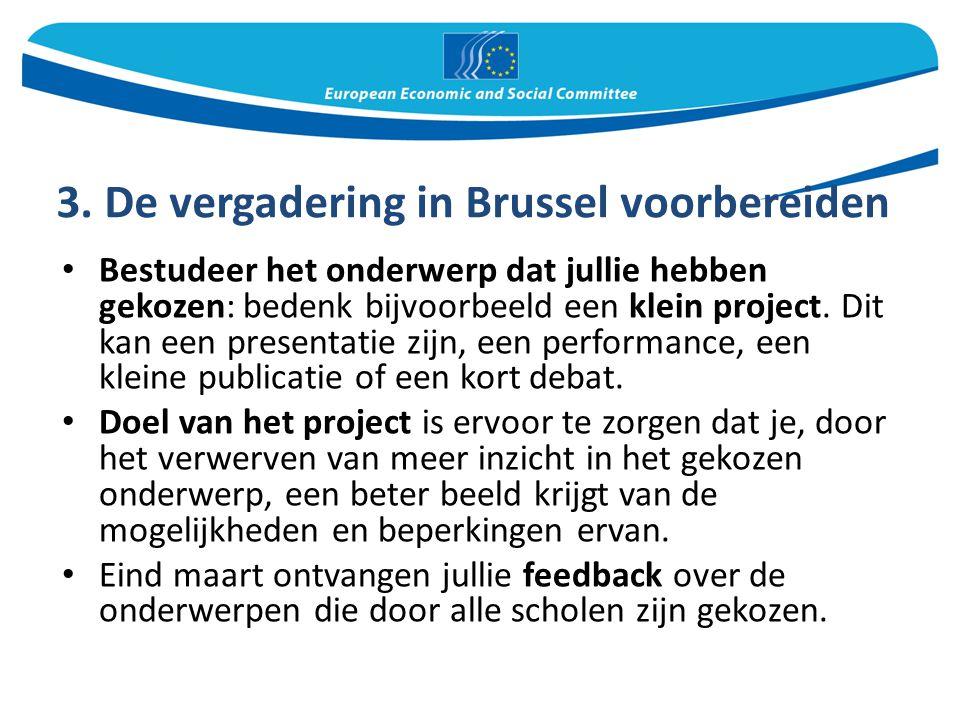 3. De vergadering in Brussel voorbereiden Bestudeer het onderwerp dat jullie hebben gekozen: bedenk bijvoorbeeld een klein project. Dit kan een presen